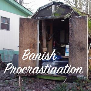 Banish Procrastination, latent lifestyle, act anyway, blog