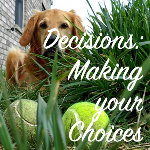 Decisions, choices, latent lifestyle, act anyway