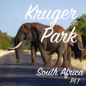 Kruger Park, Destinations Guide, Latent Lifestyle, South Africa