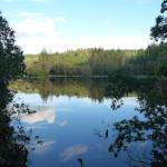 Lake, reflection, act anyway, latent lifestyle stuff