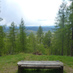 View of bench, latent lifestyle, act anyway, stuff