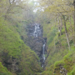 Waterfall in woods, stuff, latent lifestyle, act anyway