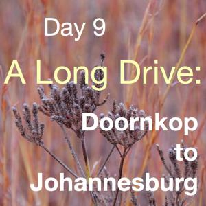 The Long Drive: Doornkop back to the Start – Johannesberg (Day 9)