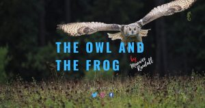 The Owl and the Frog, Maurice Randall, Fable, Rhyme